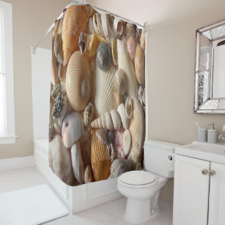 Seashells beach shower curtain