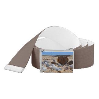 'Seashells By The Seashore' Belt