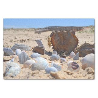 "'Seashells By The Seashore' 10"" X 15"" Tissue Paper"