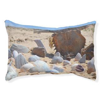 'Seashells By The Seashore'