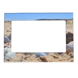 'Seashells By The Seashore' Frame Magnet