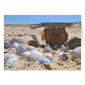 'Seashells By The Seashore' Greeting Card