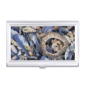 Seashells, Cape Town, Western Cape Business Card Holder
