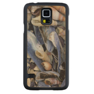 Seashells, Cape Town, Western Cape Carved Maple Galaxy S5 Case