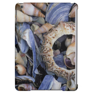 Seashells, Cape Town, Western Cape Cover For iPad Air