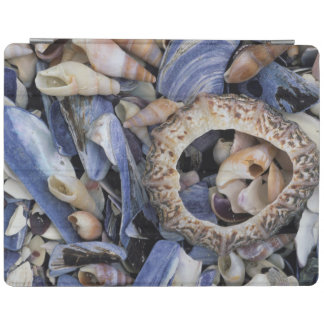 Seashells, Cape Town, Western Cape iPad Cover
