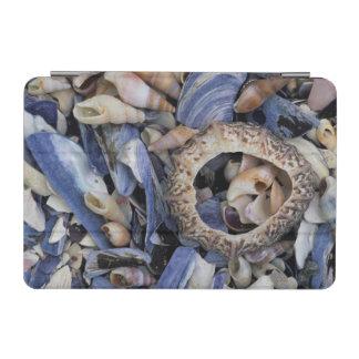 Seashells, Cape Town, Western Cape iPad Mini Cover