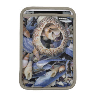 Seashells, Cape Town, Western Cape iPad Mini Sleeve