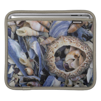 Seashells, Cape Town, Western Cape iPad Sleeve