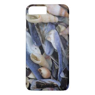 Seashells, Cape Town, Western Cape iPhone 7 Plus Case