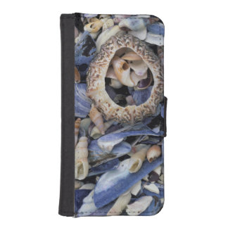 Seashells, Cape Town, Western Cape iPhone SE/5/5s Wallet Case