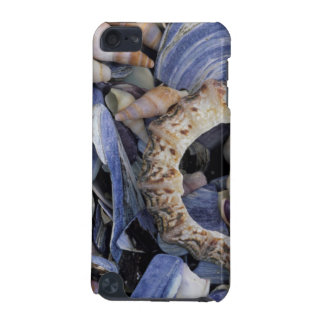 Seashells, Cape Town, Western Cape iPod Touch (5th Generation) Cases