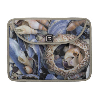 Seashells, Cape Town, Western Cape Sleeve For MacBook Pro