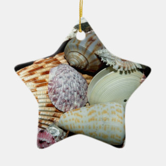 seashells christmas ornament