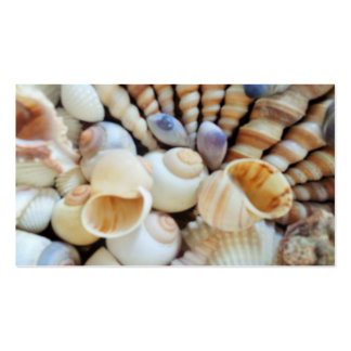 Seashells Collection, business cards, Summer Beach Pack Of Standard Business Cards