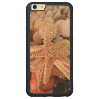 Seashells for sale Zihuatanejo, Mexico Carved Maple iPhone 6 Plus Bumper Case