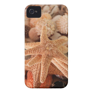 Seashells for sale Zihuatanejo, Mexico Case-Mate iPhone 4 Case