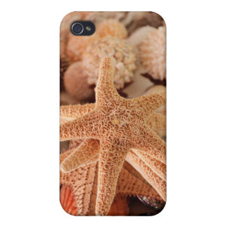 Seashells for sale Zihuatanejo, Mexico iPhone 4/4S Covers