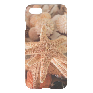 Seashells for sale Zihuatanejo, Mexico iPhone 8/7 Case