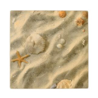 Seashells In Sand Wood Coaster