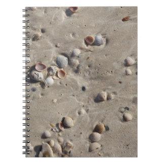 Seashells in the Wet Sand Notebooks