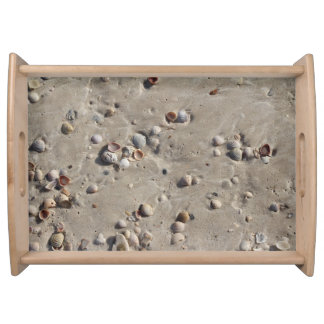 Seashells in the Wet Sand Serving Tray