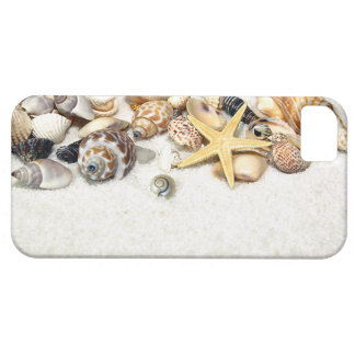 Seashells iPhone 5 Case