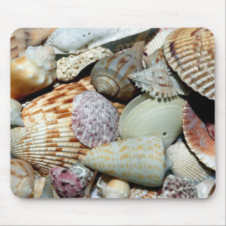 seashells mouse mat