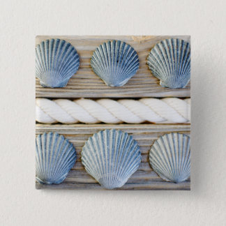 Seashells | New York City 15 Cm Square Badge