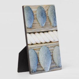 Seashells | New York City Plaque