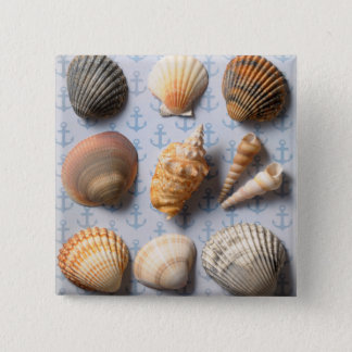 Seashells On Anchor Backdrop 15 Cm Square Badge