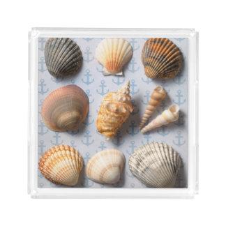 Seashells On Anchor Backdrop Acrylic Tray