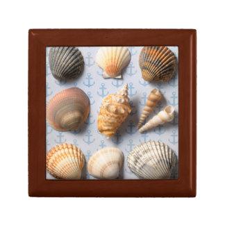 Seashells On Anchor Backdrop Gift Box