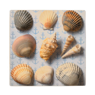 Seashells On Anchor Backdrop Maple Wood Coaster