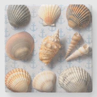 Seashells On Anchor Backdrop Stone Beverage Coaster