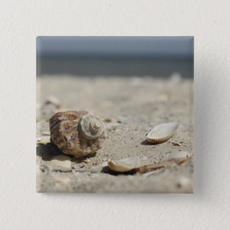 Seashells On Sand By The Sea 15 Cm Square Badge