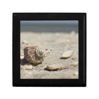 Seashells On Sand By The Sea Gift Box