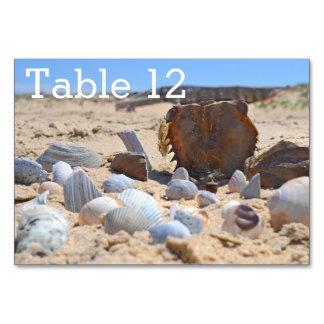 Seashells on the Beach by Shirley Taylor Table Card