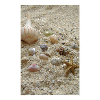 Seashells on the Beach Stationery
