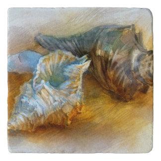 Seashells on the beach trivet