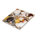 Seashells Pattern Ceramic Tiles