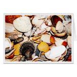 Seashells Pattern Greeting Card