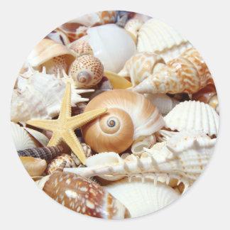 Seashells Round Sticker