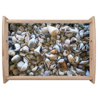 """Seashells"" Serving Tray"