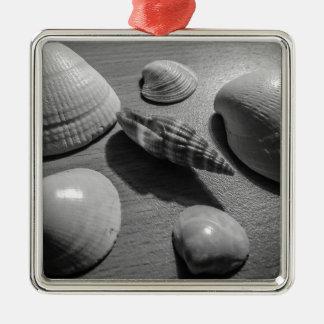 Seashells Silver-Colored Square Decoration
