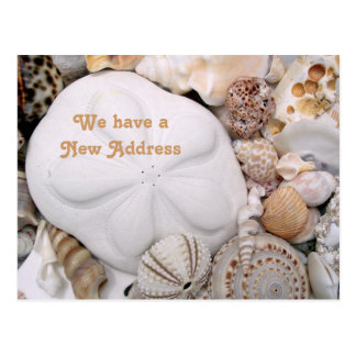 Seashore New Address Sea Biscuit & Shells Postcard