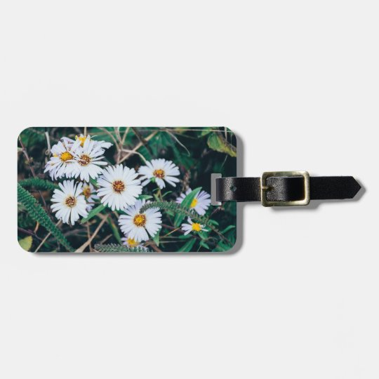 Seaside Daisies | Luggage Tag