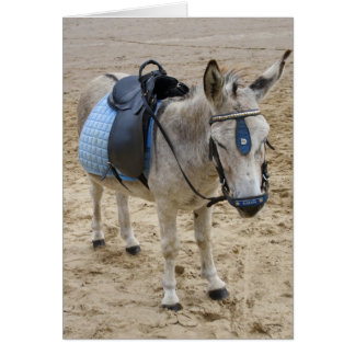 Seaside Donkey Card