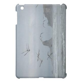 Seaside Takeoff Case For The iPad Mini