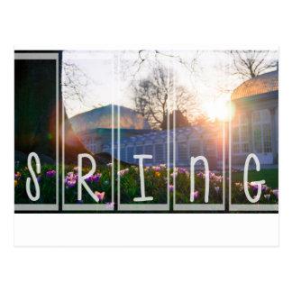 Season of Spring Postcard
